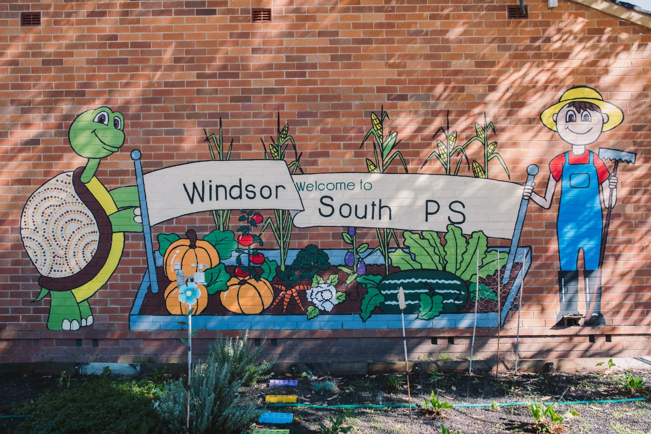Windsor south primary school